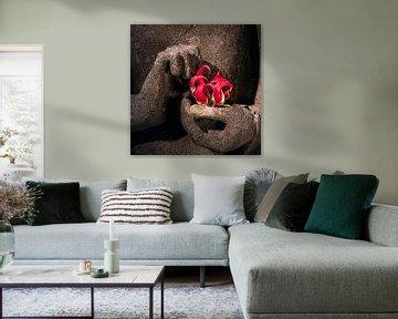 Boeddha's handen met rode bloem van Affect Fotografie
