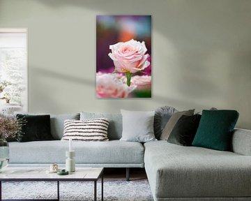 Strauß rosa Rosen von Ivonne Wierink