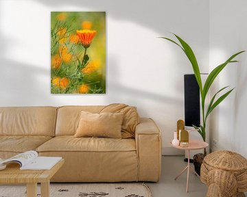 knospende Blume von Ronenvief