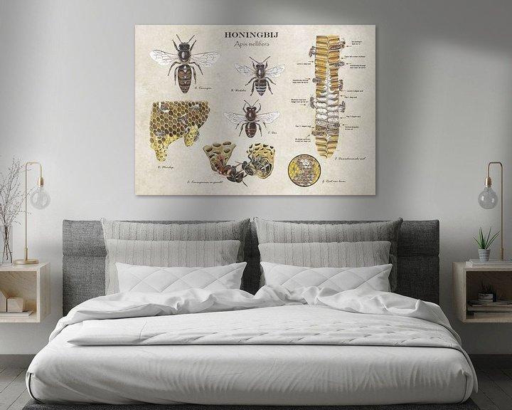 Sfeerimpressie: Het leven van de honingbij van Jasper de Ruiter