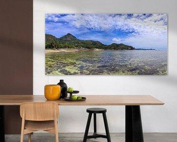 Fantastisch strand met palmboom op de Seychellen van MPfoto71