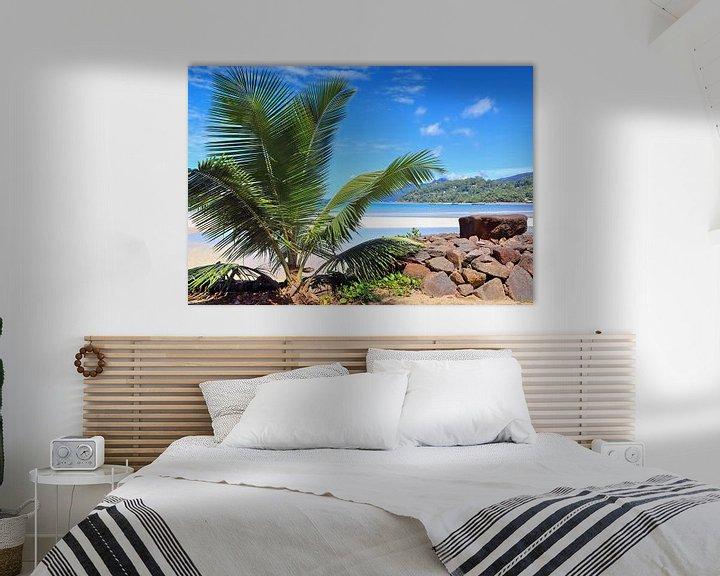 Beispiel: Traumhafter Strand mit Palme auf den Seychellen von MPfoto71