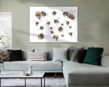 Honigbienen im Flug von Jasper de Ruiter