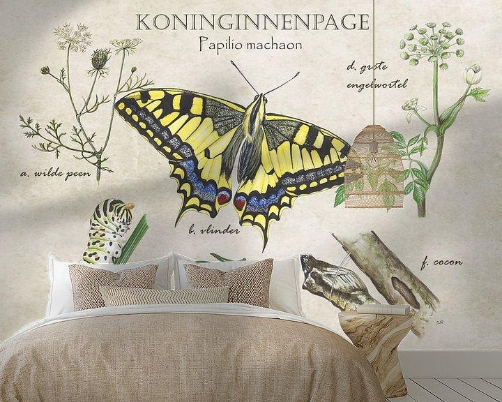 Sfeerimpressie behang: Koninginnenpage - Levenscyclus van Jasper de Ruiter