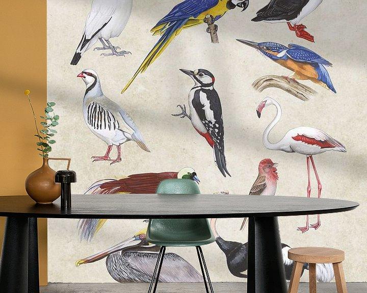 Sfeerimpressie behang: Wildlife birds van Jasper de Ruiter