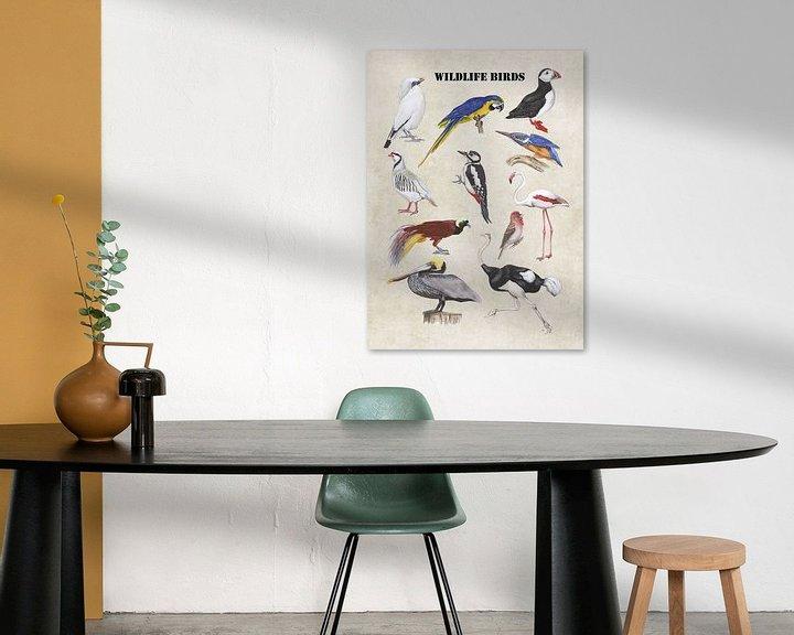Sfeerimpressie: Wildlife birds van Jasper de Ruiter