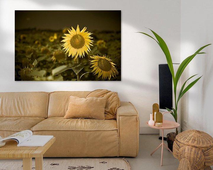 Sfeerimpressie: Vrolijke zonnebloem van Wim Slootweg