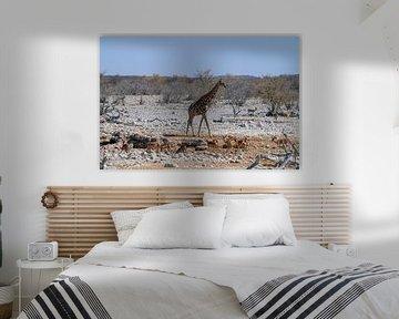 Giraffe und Impalas von Merijn Loch