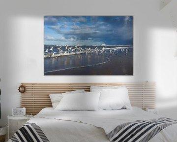 Image fraîche des mouettes de la mer du Nord sur la plage sur Geert van Kuyck