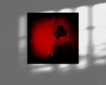 Rood/Zwart - Red/Black van Christoph Van Daele