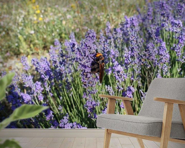Beispiel fototapete: Blühender Lavendel und Große Wespe von Paul Evdokimov
