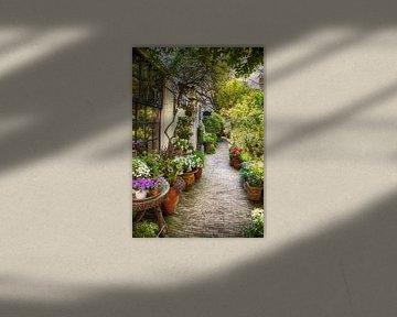 der Haager Sommergarten von Ariadna de Raadt