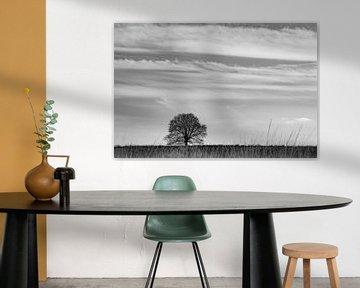 Ginkeler Heide von Nancy van Verseveld