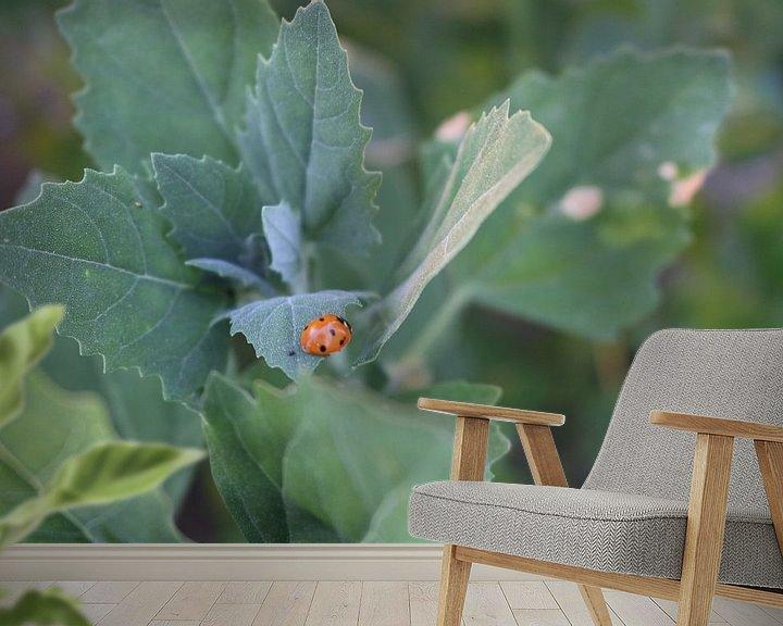 Sfeerimpressie behang: Lieveheersbeestje op een blad van Rosalie Broerze