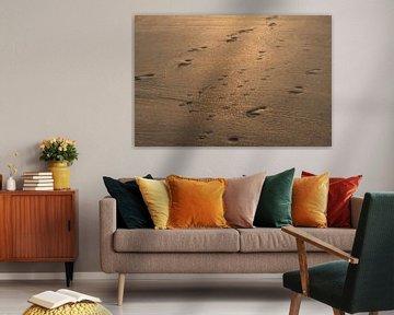 Sporen in het zand van MSP Canvas