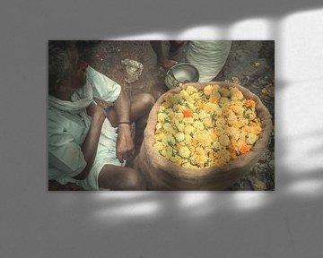 Bloemen van India van Edgar Bonnet-behar