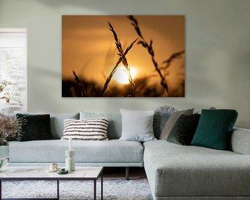 Sfeervolle kleur van een ondergaande zon van Jacob Jan ten Klooster