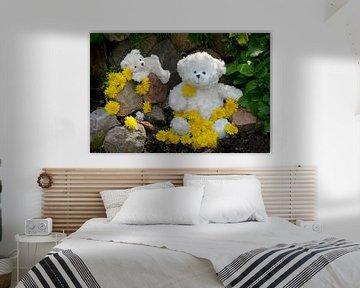 Weiße Teddybären von Claudia Evans