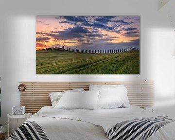 Sonnenaufgang am Poggio Covili, Toskana