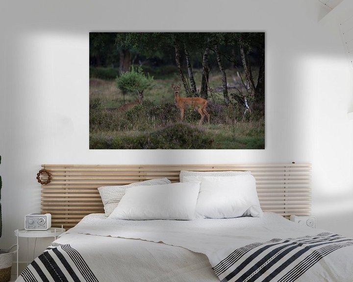 Sfeerimpressie: Een reegeit met haar kalf op natuurgebied Planken Wambuis van Eric Wander
