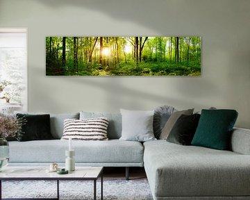 Gremberger-bos in het voorjaar van Günter Albers