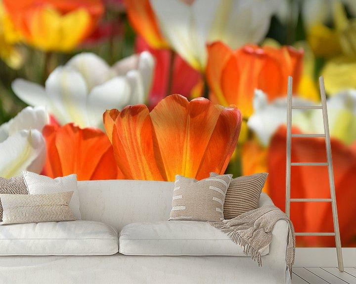 Sfeerimpressie behang: Tulpen-Spring van Markus Jerko