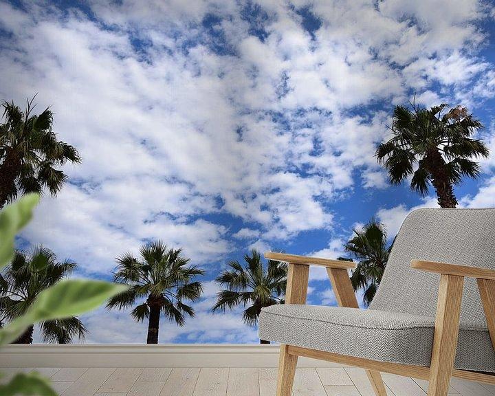 Beispiel fototapete: Palmen von Markus Jerko