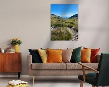 Mallorca - Landschaft von Marek Bednarek