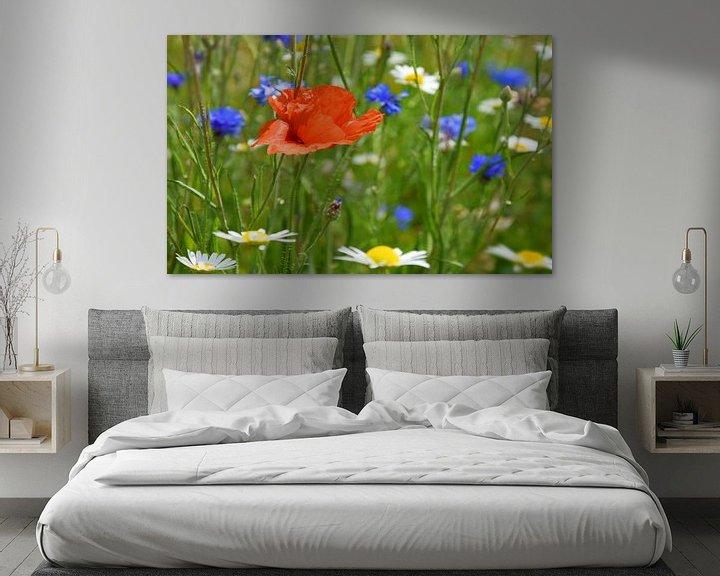 Beispiel: Blumenwiese von Markus Jerko