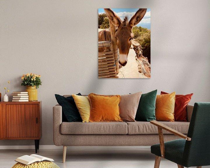 Beispiel: Esel von Marek Bednarek