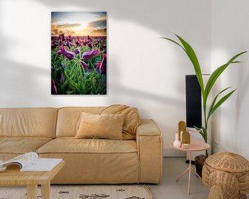 Tulpen met prachtige lucht tijdens zonsopkomst van Peter de Jong