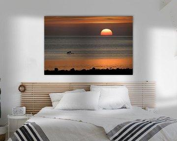 Gelukkige hond als een silhouet loopt in de zonsondergang over de waddenzee van de Noordzee in Duits van Maren Winter