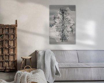 Mysteriöser Baum in schwarz-weiß von Bep van Pelt- Verkuil