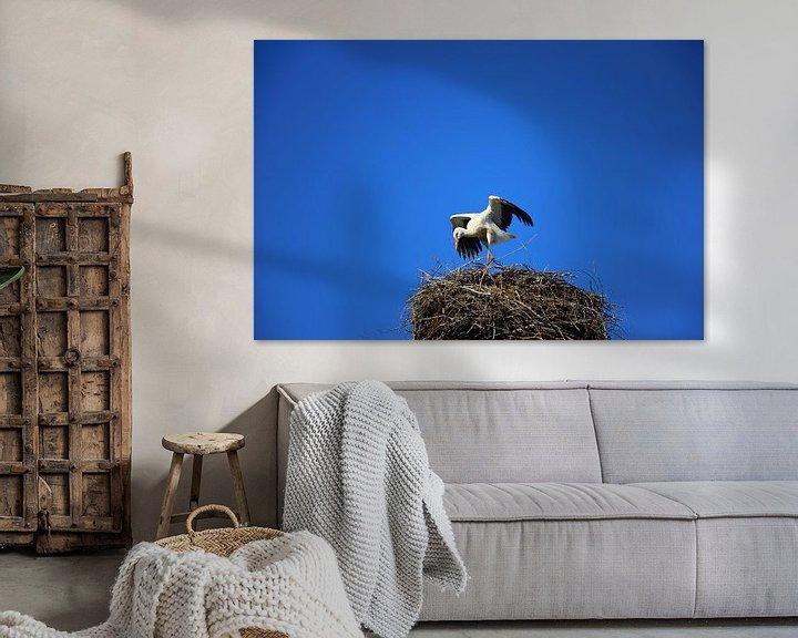 Sfeerimpressie: Een ooievaar spreidt zijn vleugels in het ooievaarsnest... van Ulrike Leone