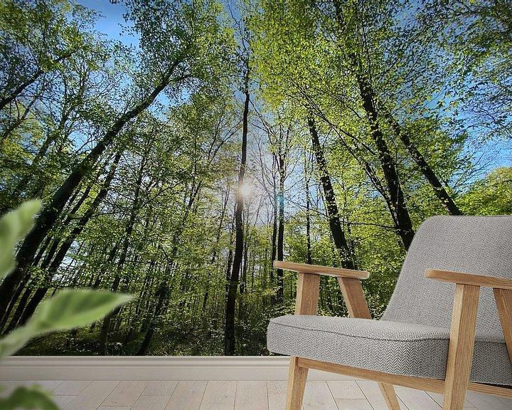 Beispiel fototapete: Wald im Gegenlicht von Markus Jerko