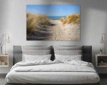 voetpad naar het strand door de zandduinen met helmgras (Ammophila arenaria) aan de Oostzee, blauw w van Maren Winter