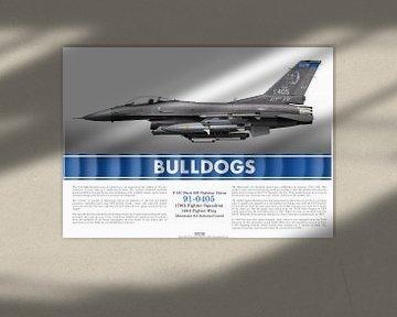 F-16C 91-0405 Minnesota Air National Guard van Lieuwe de Vries