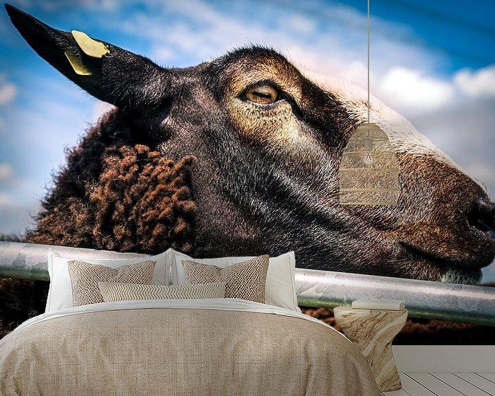 Sfeerimpressie behang: Knappe bruine schapen 9 van Urban Photo Lab