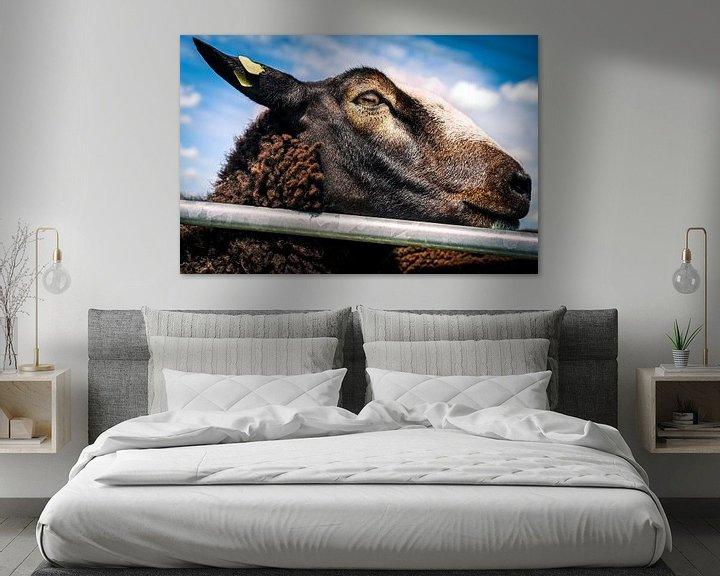 Sfeerimpressie: Knappe bruine schapen 9 van Urban Photo Lab