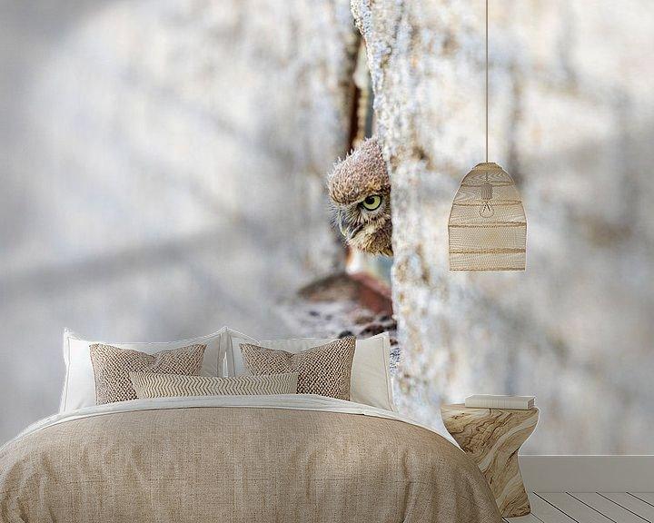 Sfeerimpressie behang: Steenuil van Jaap Tempelman