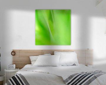 GreenLeaf von Anja van Rijen