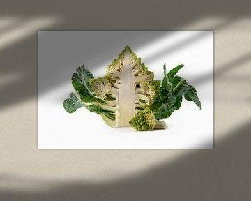 Brocoli Romanesco ou chou-fleur romain, coupé en deux, isolé sur un fond blanc avec un espace de cop sur Maren Winter