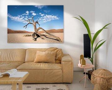 Hiddenvlei, boom onder wolkenlucht van Felix Sedney