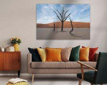 Bomen in Deadvlei, onder wolkenlucht van Felix Sedney