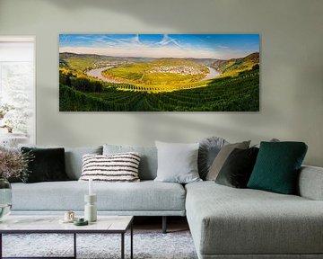 Panorama Leiwen en Trittenheim, Duitsland van Henk Meijer Photography
