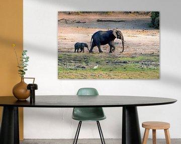 Moeder olifant met kleintje van Merijn Loch
