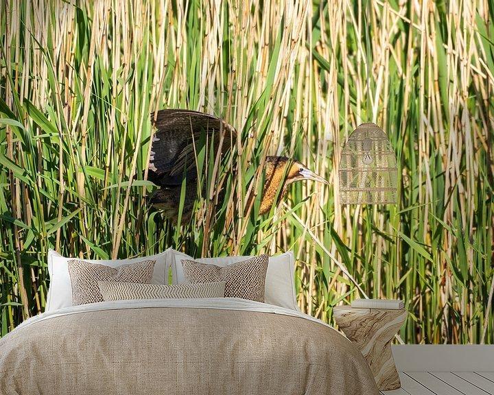 Beispiel fototapete: Rohrdommel-Reiher von Merijn Loch