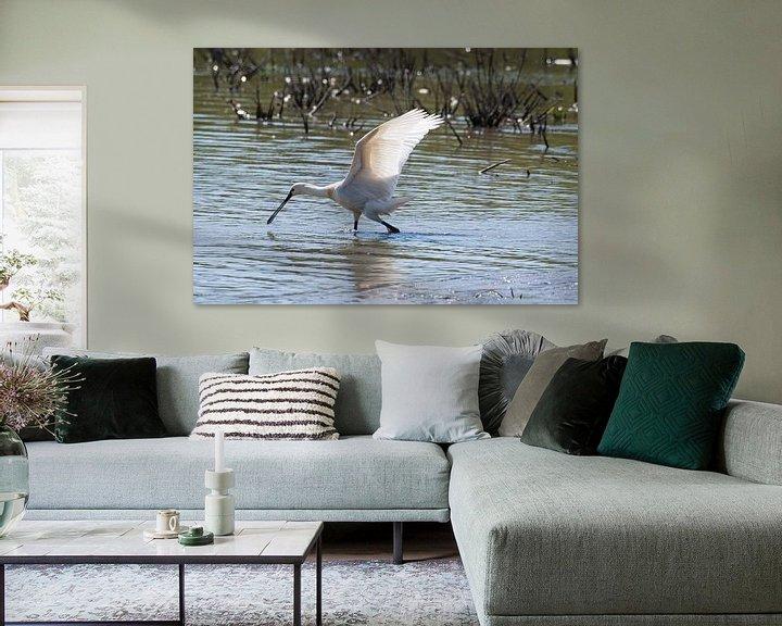 Beispiel: Der Spooner auf der Suche nach Nahrung von Merijn Loch