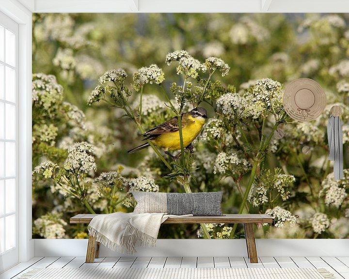 Beispiel fototapete: Gelbe Bachstelze (Vogel) von Leon Verra