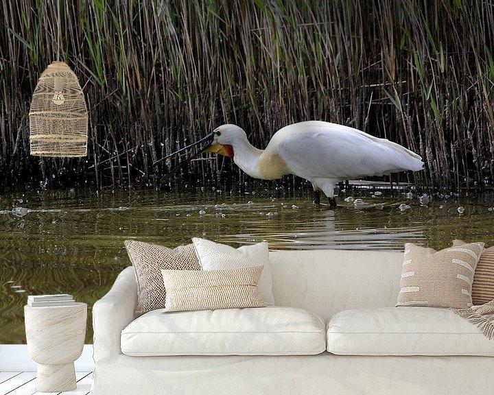 Beispiel fototapete: Spooner mit Wassertropfen auf Texel von Leon Verra